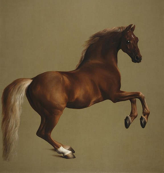 George Stubbs, Whistlejacket, c.1762, National Gallery, London